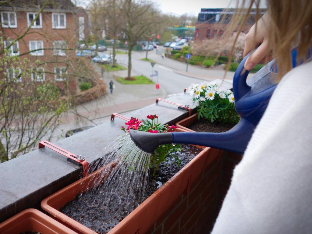 Frau gießt Blumen